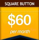 Square Button: $60 per month
